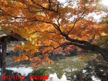 2012_11_25八坂神社