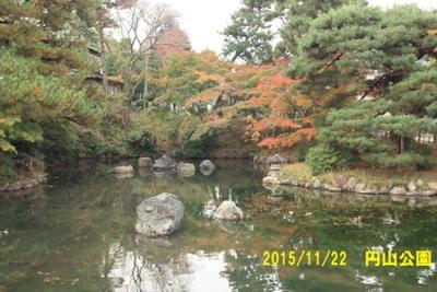 2015_11_22八坂神社
