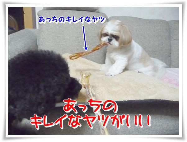 P1120149_1.jpg