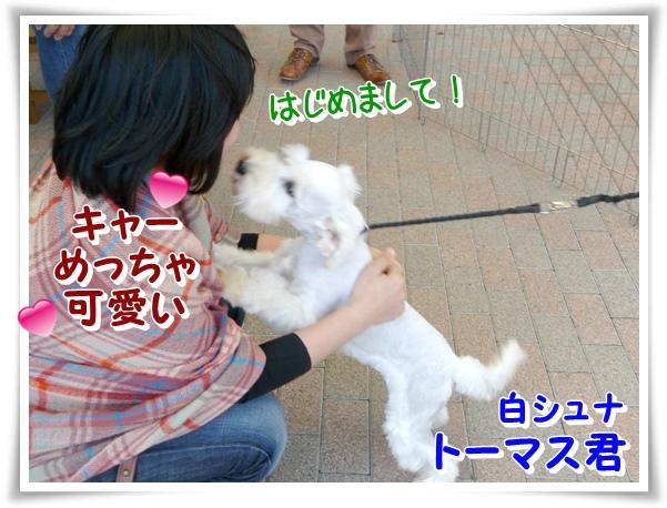 P1120325_1.jpg