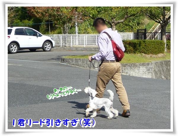 P1120328_1.jpg