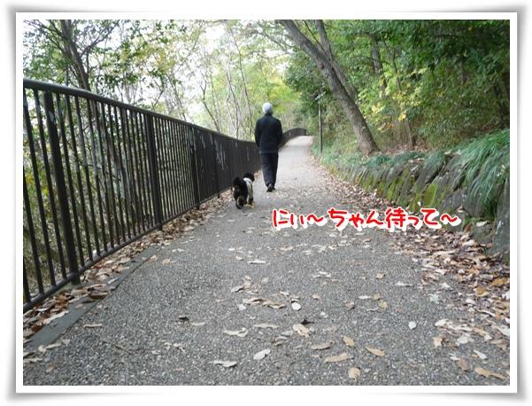 P1120701_1.jpg