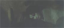 突然の落石で死んだ森美也子