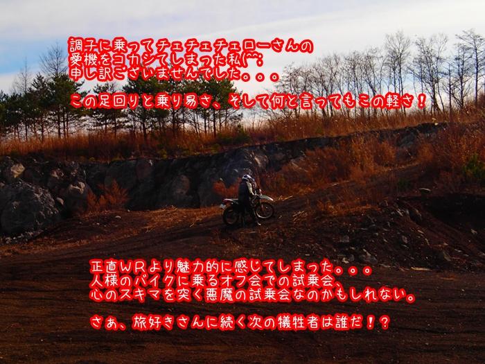 0035A.jpg