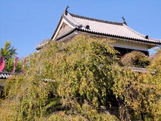 上田城址-001