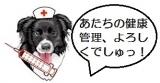 看護婦JUDY - コピー