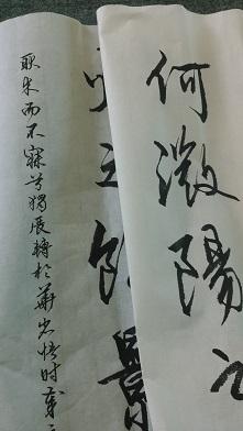 老師細字(S)