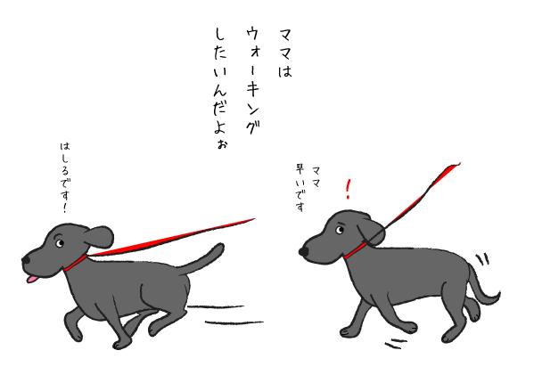 走り出す犬