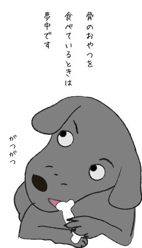 おやつを食べる犬