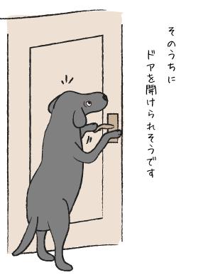 ドアをあける犬