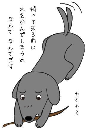 木をかむ犬