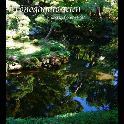 殿ヶ谷戸庭園151001
