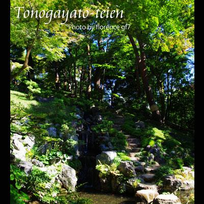殿ヶ谷戸庭園151002