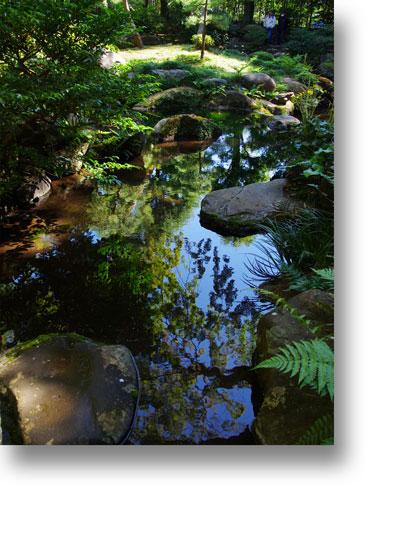 殿ヶ谷戸庭園151005