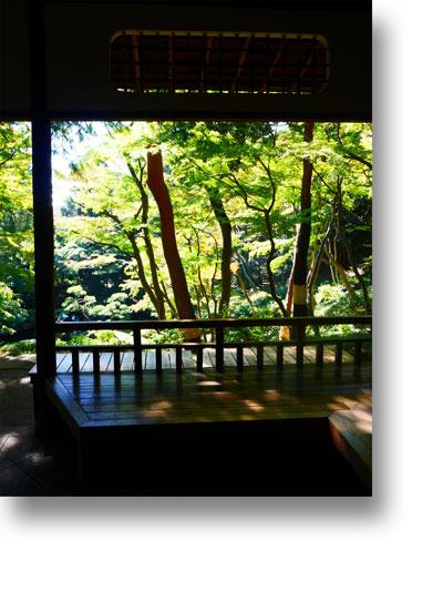 殿ヶ谷戸庭園151008