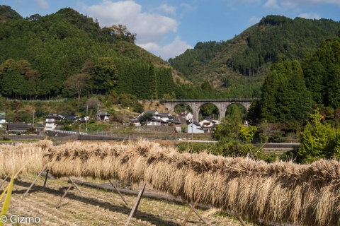 掛け干しの稲と宝珠山橋梁