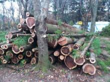 $フォンテーヌの森つくばキャンプ場STAFF BLOG
