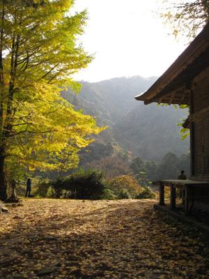 鰐淵寺と旧大社駅10