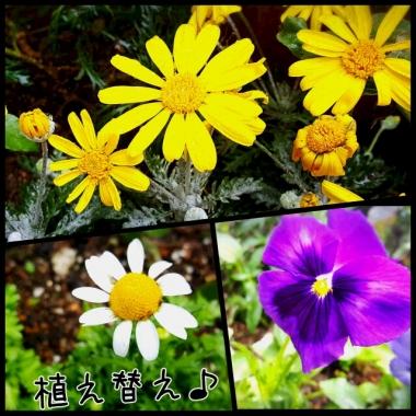 PhotoGrid_1448170459650.jpg