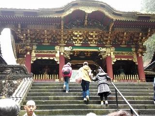 IMG_20151119_104514 白鶴