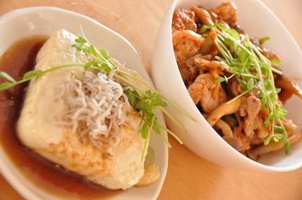 1028豆腐ステーキと豚キムチ