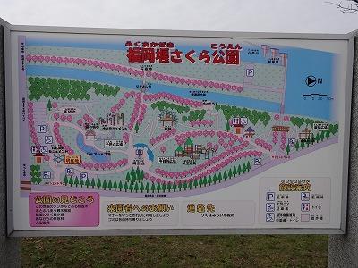 20151107 (4)