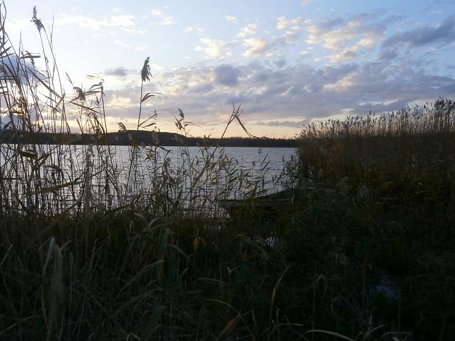夕日の草原