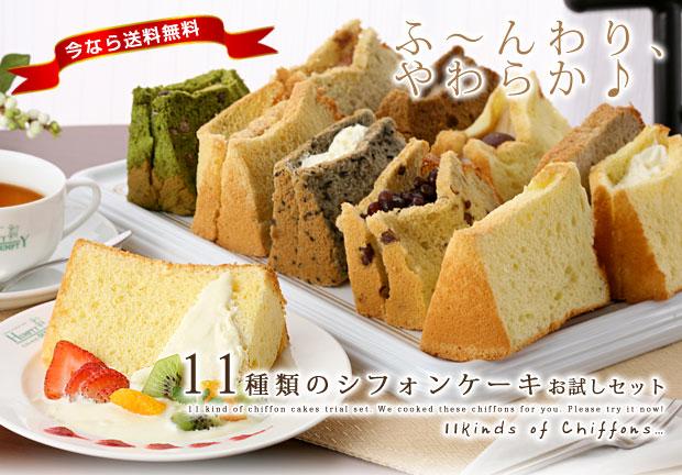 11syurui_kai02.jpg