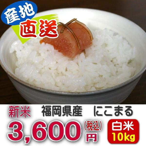 ricestore_h00100-10.jpg