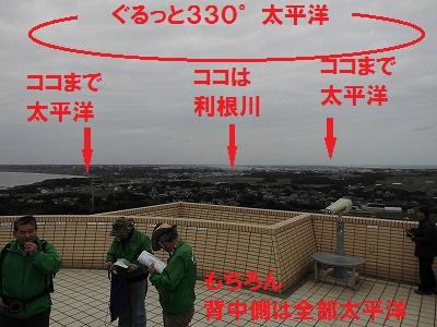 CIMG4181SP.jpg