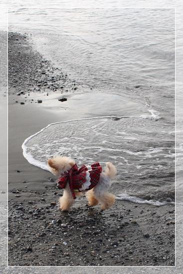 波と遊ぶ子