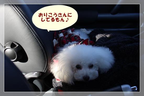 車の中でお利口さん♪