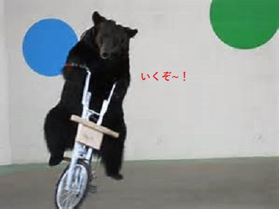 いくぞ~の熊