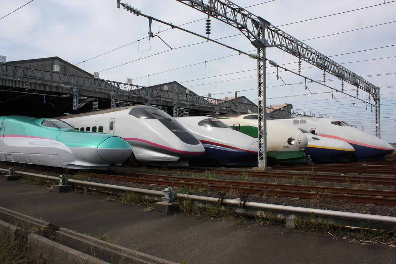 JR_East_Shinkansen_lineup_at_Niigata_Depot_200910.jpg