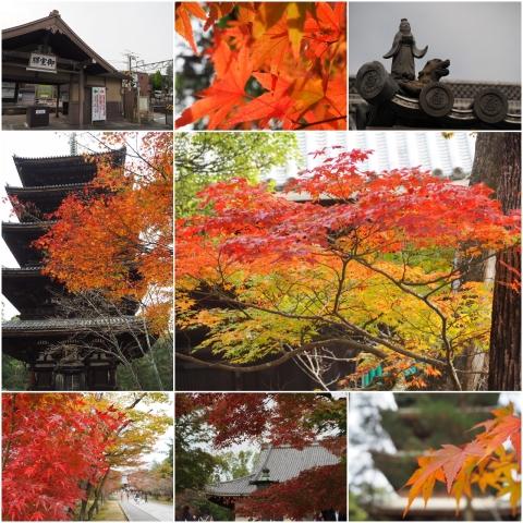 20151122_仁和寺
