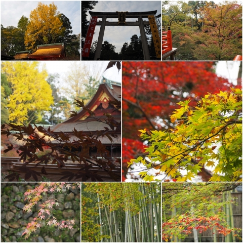 20151122_北野天満宮