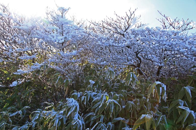20151122栗駒山山頂3