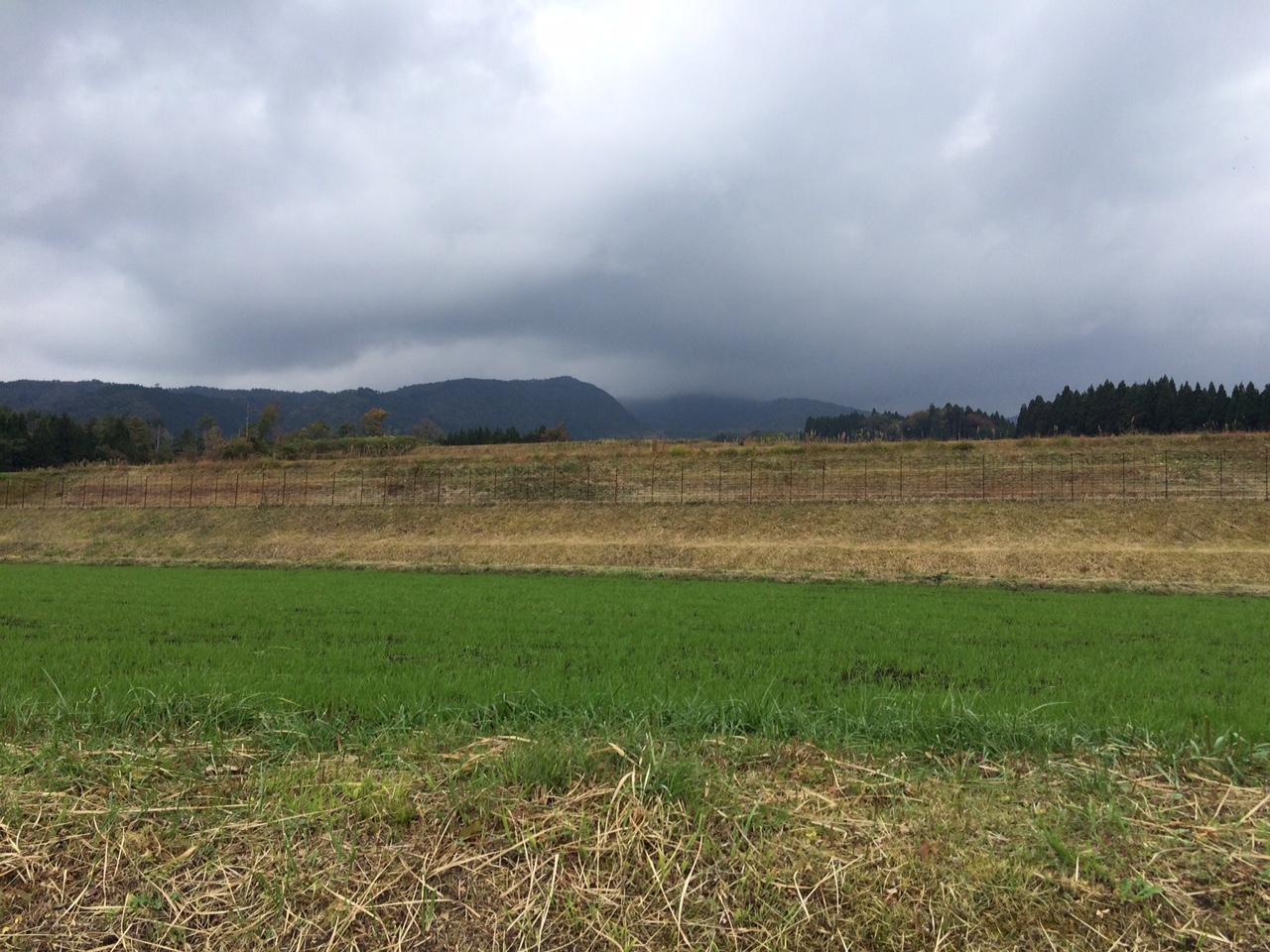 151030大山09.JPG