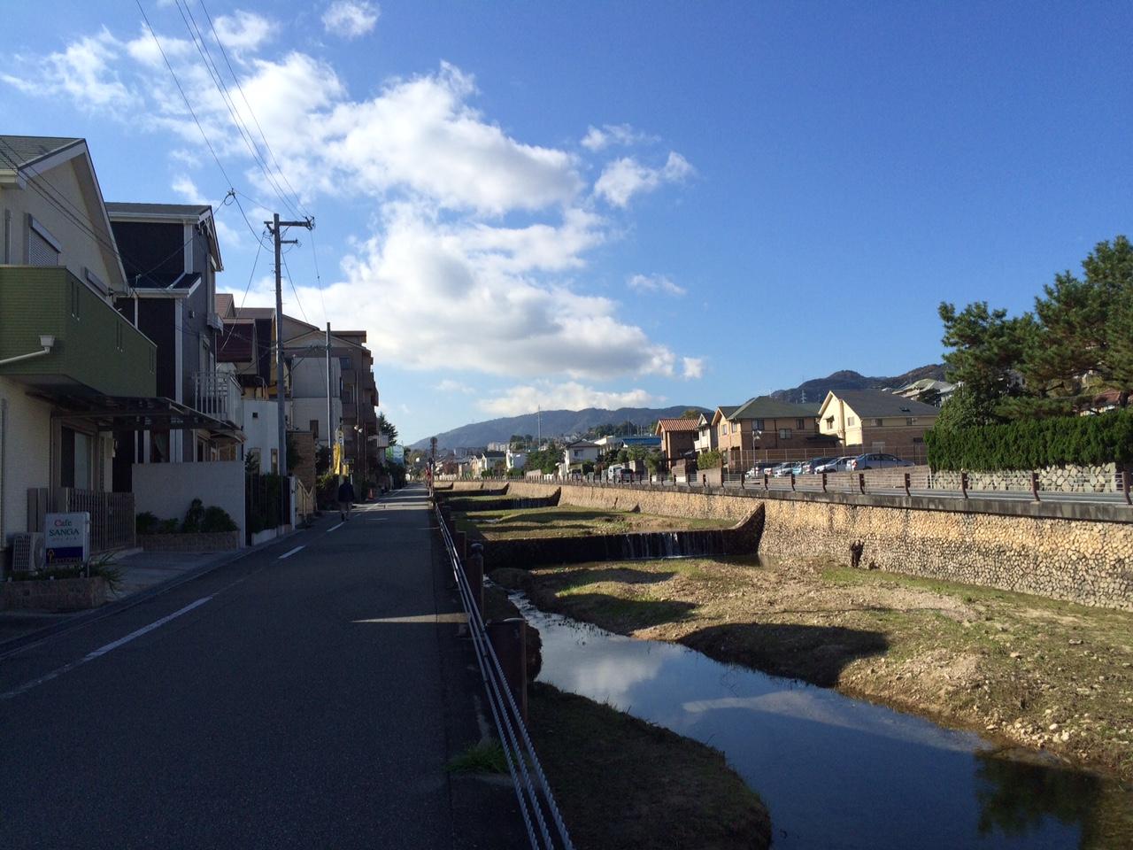 151120六甲山10.JPG