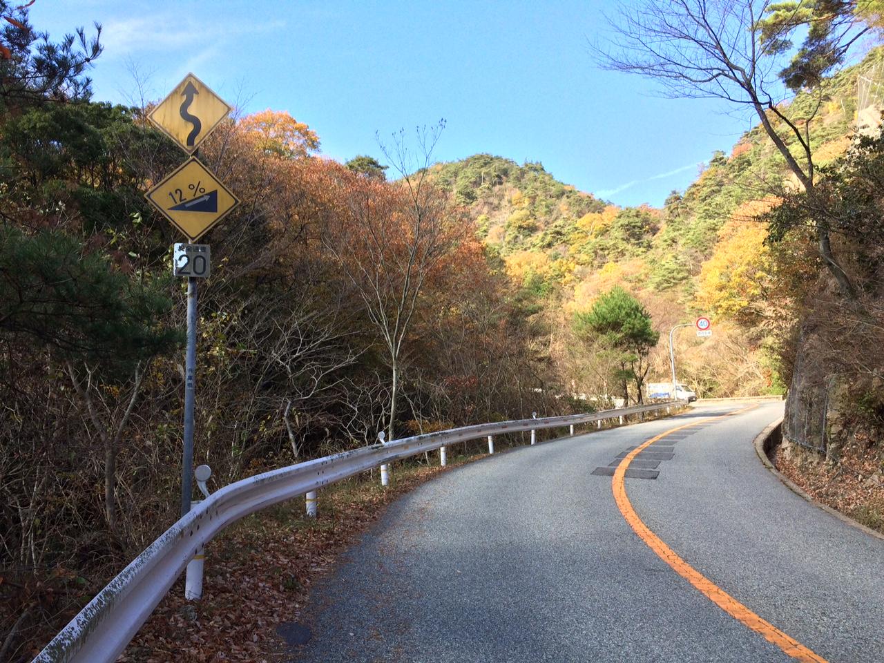 151120六甲山22.JPG
