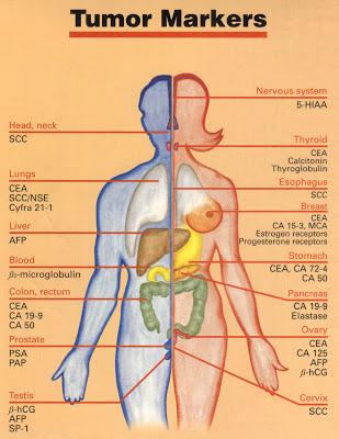 Tumor-Markers.jpg