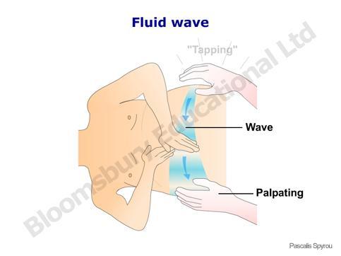 fluid_wave1364182239774.jpg