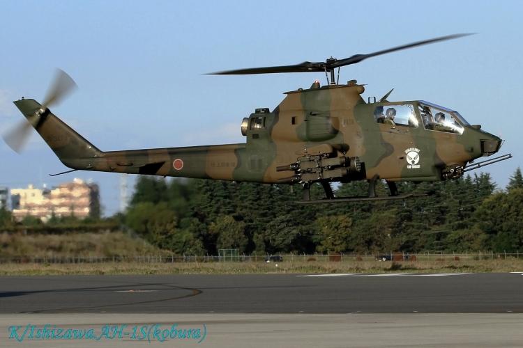 A-799.jpg