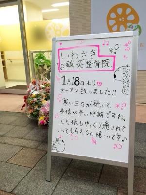 IMG_7311.jpg
