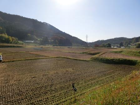 2015南三陸晩秋 33