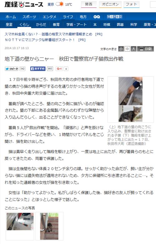 秋田県の仔猫救出事件 png