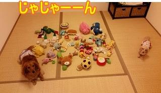 1Fおもちゃ