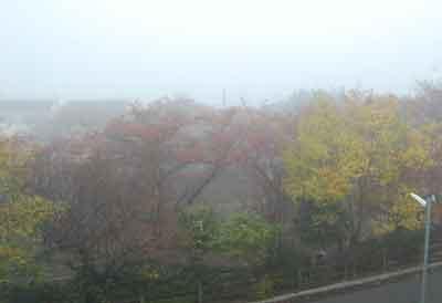 15.11.3霧