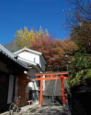 15.11.16瑜伽神社