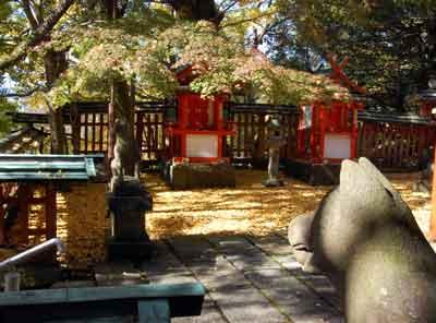 15.11.16瑜伽神社きつね